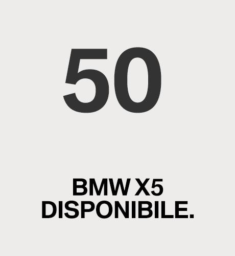 50 BMW X5 DISPONIBILE.